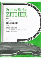 Studio-Reihe Zither 5